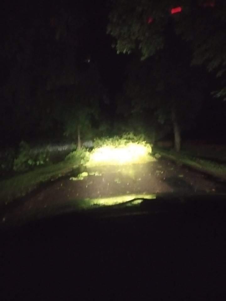 Nocna nawałnica w Rypinie i powiecie. Wiatr łamał drzewa i zrywał dachy