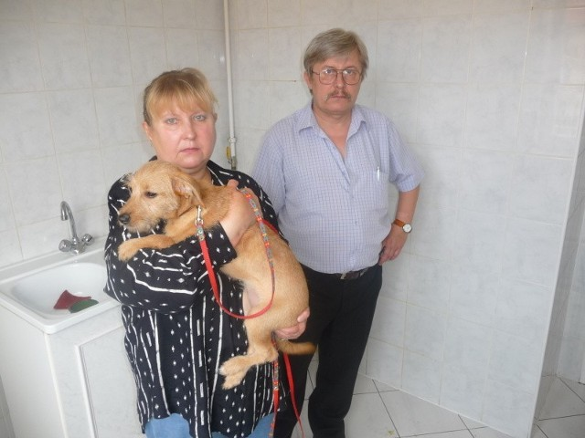 Irena i Krzysztof Dłużewscy są załamani swoją sytuacją. Wciąż jeszcze mają nadzieję, że miasto zaproponuje im jakieś wyjście.
