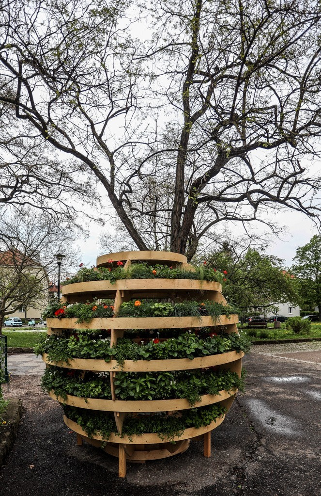 Growroom, czyli niezwykły ogród w kształcie kuli wyrósł na...