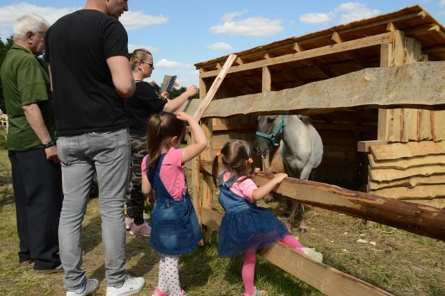 Zagroda Zamkowa w Rudnie koło Krzeszowic (pow. krakowski). W tym mini ZOO są m.in. krowy, osły, lama, alpaka, króliki, świnie
