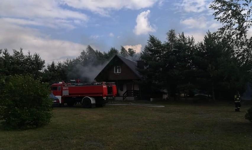 Pożar domków letniskowych i lasu na Dolnym Śląsku (ZDJĘCIA)