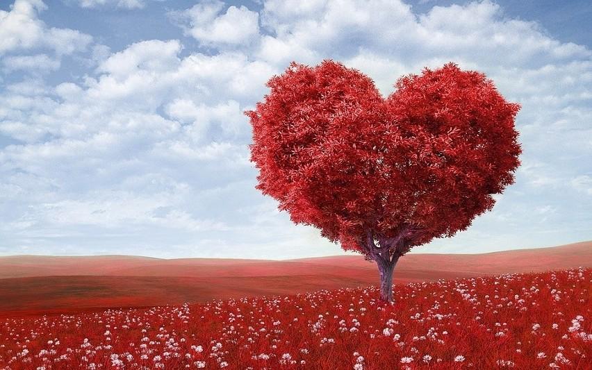 Wiersze Miłosne Dla Dziewczyny Sms Na Dobranoc