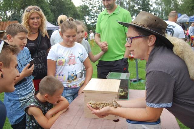 Wtorek 25 czerwca grupa dzieci z gminy Szubin spędzi wśród zwierząt na Ranczo u Amadeusza w podnakielskich Bielawach