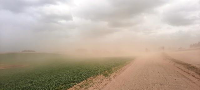 Burza piaskowa pod Bytowem. Prawie jak na Saharze.
