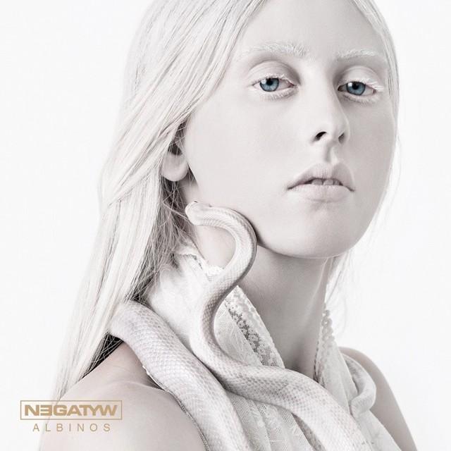 Mysłowicki Negatyw właśnie wydał swój piąty album pt. Albinos