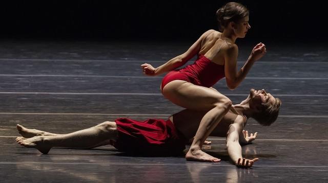 Sugestywność formy, precyzja ruchów, malarskość muzyki sprawiają, że ten spektakl po prostu trzeba zobaczyć na żywo