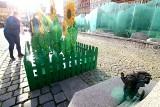 Dziś Dzień Życzliwości. Przy krasnalu Życzliwku na wrocławskim Rynku wyrosły słoneczniki