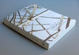 Wrocławskie Muzeum Architektury wydało pierwszą monografię uznanej rzeźbiarki