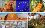 Unijne plany zrewolucjonizują Wspólną Politykę Rolną. Są ambitne
