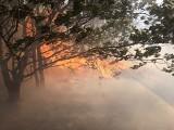 Ogromny pożar ścierniska i lasu w gminie Złocieniec [ZDJĘCIA]