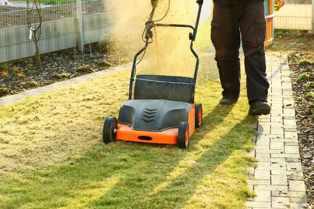 Aerację trawnika wykonuje się wczesną wiosną tuż przed nawożeniem