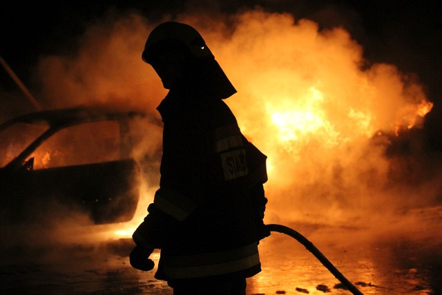 4 maja obchodzony jest Międzynarodowy Dzień Strażaka - święto wszystkich strażaków zawodowych i druhów ochotników. To okazja do uhonorowania wyróżniających się funkcjonariuszy, nadania odznaczeń, wyróżnień i awansów na wyższe stopnie służbowe. Jednak nie tylko strażacy świętują 4 maja. Jakie jeszcze święta wypadają tego dnia? Sprawdziliśmy w kalendarzu świąt oraz świąt nietypowych. Zobaczcie na kolejnych slajdach.PRZESUŃ GESTEM LUB STRZAŁKĄ >>>