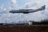 Antonow An-225 Mrija wylądował w Warszawie. Zobacz lądowanie największego samolotu świata w Polsce [WIDEO] [ZDJĘCIA]