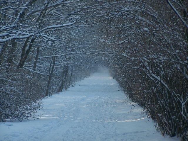 Zdjecia zimy w Bialymstoku zrobione przez internaute.