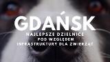 TOP 10 najlepszych gdańskich dzielnic pod względem infrastruktury dla zwierząt. W tych częściach miasta pupilom żyje się dobrze!