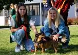Dzień otwarty w lubelskim Schronisku dla zwierząt. Placówkę odwiedziła Katarzyna Bujakiewicz. ZDJĘCIA