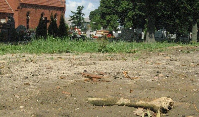 Po raz kolejny na cmentarzu w Strzelcach można było znaleźć ludzką kość. Po obejściu całego terenu na szczęście okazało się, że tylko jedną.