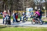 W ciepły wiosenny weekend mieszkańcy oblegają Zalew Nowohucki [ZDJĘCIA]