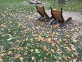 Park Miejski w Sandomierzu. Nowy, ale... już zaśmiecony (ZDJĘCIA)