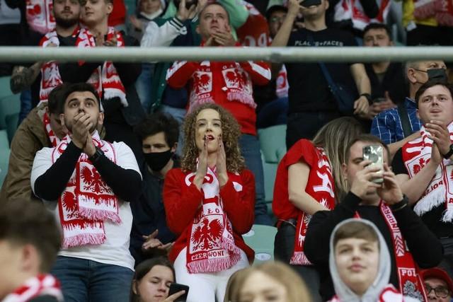 Kibice na meczu Polska - Rosja