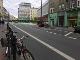 Poznań: Znak drogowy został zasłonięty przez roślinę w donicy