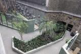W Orientarium w Łodzi zostanie posadzonych ok. 17 tys. egzotycznych roślin. Wyrasta piękna dżungla! NOWE ZDJĘCIA