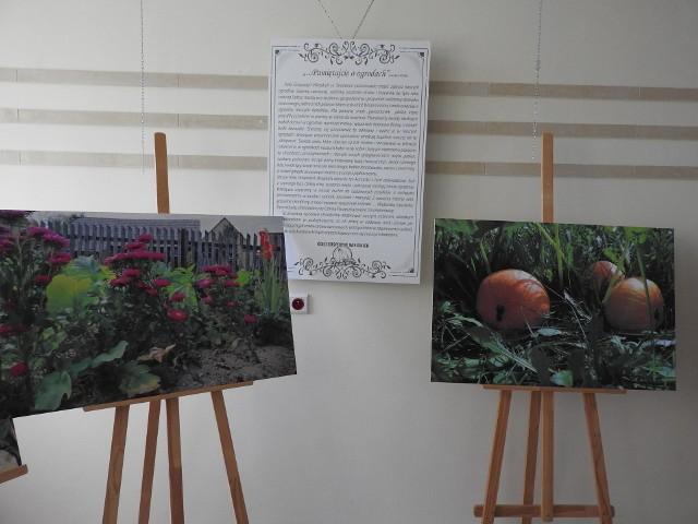 Wystawa przywodzi na myśl ciepłe lato u dziadków