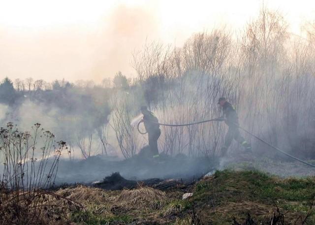 Uważajcie na wypalanie traw