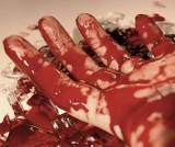 Morderstwo kobiety w Nowej Soli. Kat uderzał patelnią, żelazkiem i nożyczkami