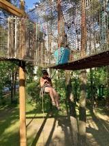 Stalowa Wola. Kontrola sprawności parku linowego w parku miejskim