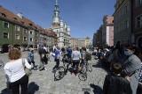 Stary Rynek tętni życiem. Turyści przyjechali do Poznania po lockdownie. W południe poznaniacy przyszli obejrzeć trykające się koziołki
