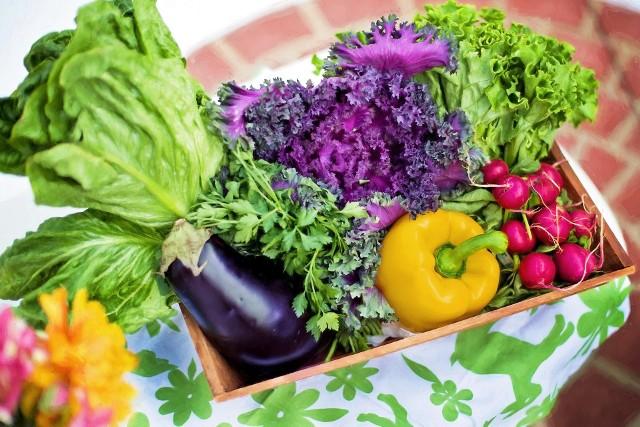 Co sadzimy w marcu i kwietniu? Warzywa i kwiaty, które siejemy na wiosnę. Kompleksowy przewodnik na następnej stronie [LISTA]