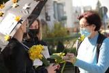 Akcja Żonkile 2021 w Sępólnie Krajeńskim z Centrum Kultury i Sztuki. Mieszkańcy otrzymali symboliczne kwiaty. Zobaczcie zdjęcia