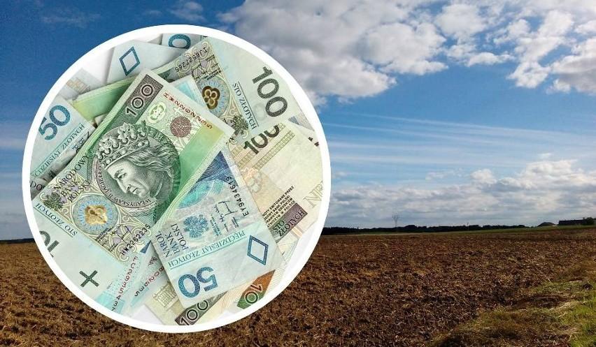 Dopłaty bezpośrednie 2021. Nie przegap 17 czerwca, bo stracisz pieniądze! Biura  powiatowe Agencji w Kujawsko-Pomorskiem dłużej otwarte