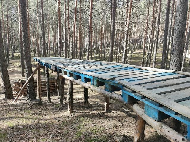 Miłośnicy downhillu, czyli ekstremalnej odmiany kolarstwa górskiego, tworzą w lasach na terenie Nadleśnictwa Zielona Góra tory do ćwiczeń. Leśnicy chcą ten temat uregulować, by w lasach było bezpiecznie. I dla spacerowiczów, i dla trenujących.