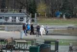Park Śląski w Chorzowie pełen życia w Wielkanoc. Wielu mieszkańców korzysta z ładnej pogody