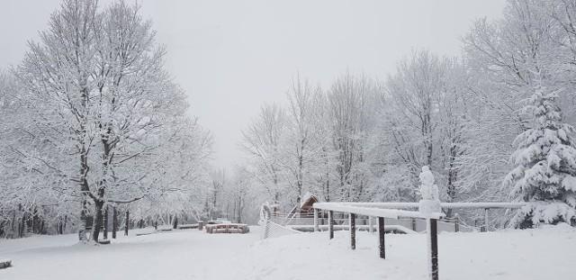 Choć we Wrocławiu o śniegu na razie możemy tylko pomarzyć, wystarczy wybrać się kilkadziesiąt kilometrów na południe, by znaleźć się w prawdziwie zimowym świecie. Zobaczcie zimę na Dolnym Śląsku na dzisiejszych zdjęciach internautów - posługujcie się klawiszami strzałek, myszką lub gestami