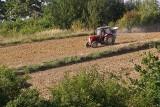 Praca czeka w gospodarstwach, ale chętnych na stałe zajęcie u rolników jest za mało