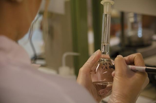 Włocławek będzie miał miejski program in vitro. Pierwsze pary skorzystają z niego jesienią 2021 roku