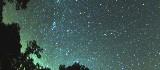 Deszcz meteorów - spadające perseidy. Kulminacja już tej nocy. (zdjęcia)