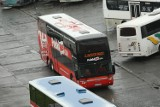 PolskiBus wprowadza podróże z przesiadką w Krakowie. Do Wiednia nawet za 24 złote!