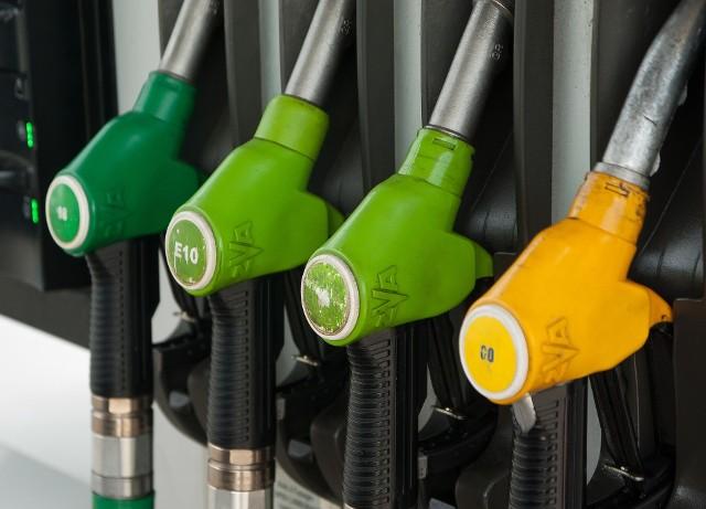 Sprawdź aktualne ceny paliw w Zielonej Górze. Przejdź do kolejnych slajdów.