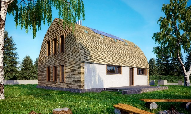 Dom Trzon - wizaualizacjaObecny projekt ekologicznego i energooszczędnego Domu Trzonu jest owocem kilkuletniej pracy i wielu przemyśleń. Pomysł był kilkakrotnie przemodelowany zanim osiągnął obecny kształt.