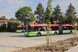Zmiany dla pasażerów i kierowców. Nowe pętle autobusowe i parkingi przy Żeglarskiej, Zbożowej i Franczaka. Kiedy z nich skorzystamy?