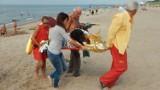 Pies zasłabł na plaży w Darłowie. Pomogli ratownicy WOPR [WIDEO]