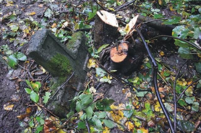 Niedawno dzięki akcji ZGFTP, PSRH X D.O.K. oraz Węgrów udało się oczyścić zaniedbany fragment cmentarza przy ul. Przemysława w Przemyślu, na którym spoczywają m.in. żołnierze węgierscy (na fot). Jednak okazuje się, że nekropolia kryje jeszcze inne, nieznane obecnie tajemnice.