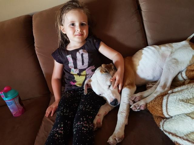 Agatka Andrzejewska z Opola ma 6-lat i ogromne serce dla zwierząt. Poznajcie ją i jej podopiecznych, którym uratowała życie. Wszystkie czworonogi znalazły nowe domy, a Agatka już czeka na przyjęcie kolejnych.