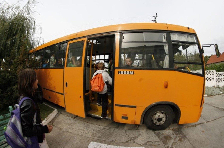 Kierowca szkolnego autobusu by pijany. Tylko on odpowie za