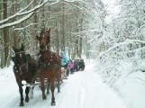 Agroturystyka na zimę w Kujawsko-Pomorskiem. Rolnicy mają sporo chętnych