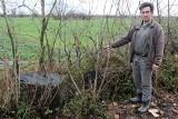 Rolnik ukarany za nielegalną wycinkę jesionu przy drodze w gminie Gniew. Musi zapłacić prawie ćwierć miliona kary